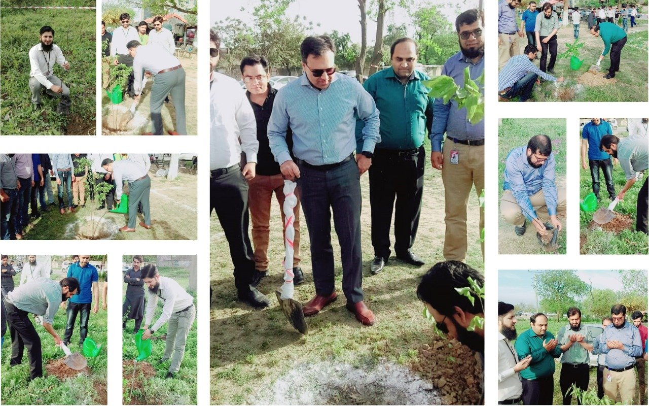 Clean & Green Drive Initiated By Sybrid Customer Support North Team